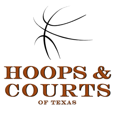 Hoops and Courts Icon